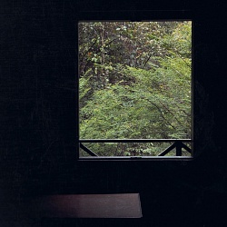 indonesia :: living with the forest
