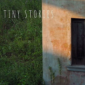 tiny stories [ongoing]