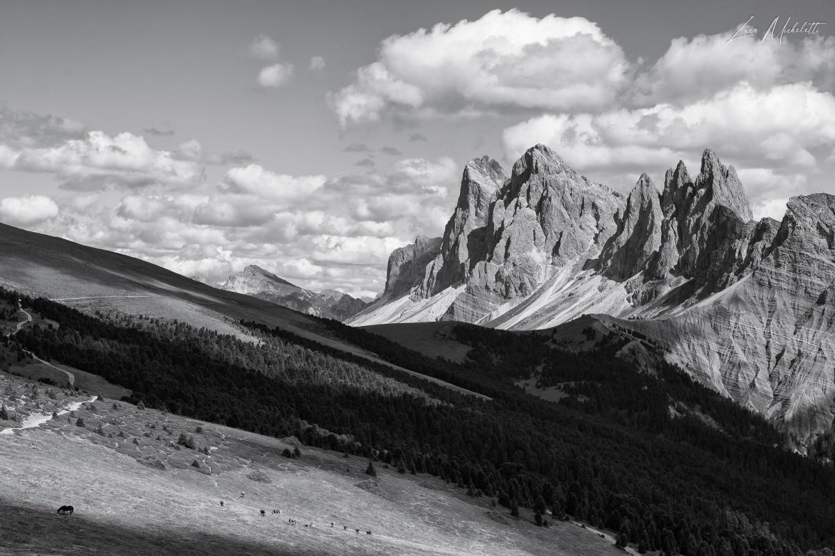 Bianco e nero - Montagna