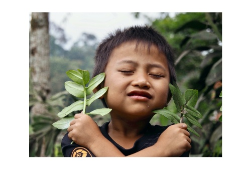 """Missing this little one and his playful smile, September 2018. From Worldview """"Indonesia, living with the forest""""."""