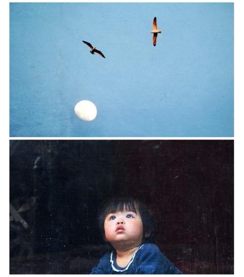 moon eyes.