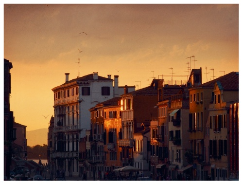 Venice turned 1600. Any time I spot the mountains from Venice, I draw an emotional line connecting the two sides of my roots. Venice herself, in the end, could not exist without those forests.