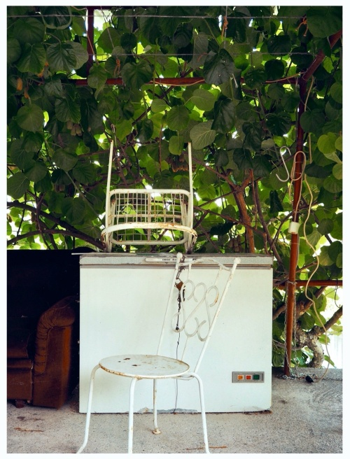 As we walked around lake Skadar trying to reach the next village, we noticed many little deserted kiosks along the disused road. The season was still low, like lake waters: only few tourists and stray cats were around. This kiosk in particular reminded me of one of the two bars in my grandma's village. I was definitely the only client at 2pm in August, when I needed to get no-matter-what that fake strawberry ice cream with a pinkish chewing-gum inside. I would expect the same from this rusty fridge. Next time.