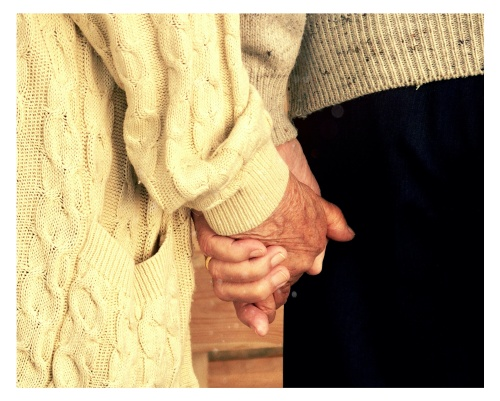 I have a thing for elders, sweaters, wooden panels, and carrot cakes.