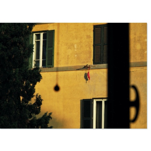 Sunrise in Conca d'Oro, Rome   From my bountiful archives of trees in front of windows.