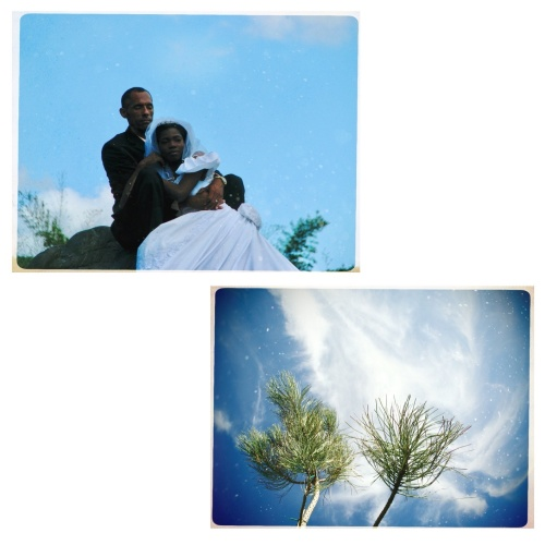 The wedding album, details.