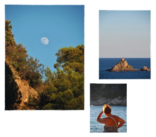 The essential life   From the story *Montenegro, parallel path*
